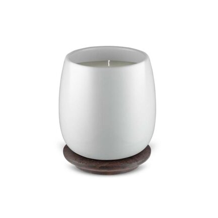 best scented candles Alessi
